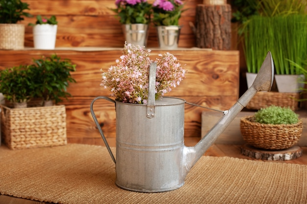 Wildflowers in watering cans. gardening tools, houseplants and flowers on the terrace in garden. concept of gardening and hobby. spring garden. bouquet summer flowers in metal watering can on verande.