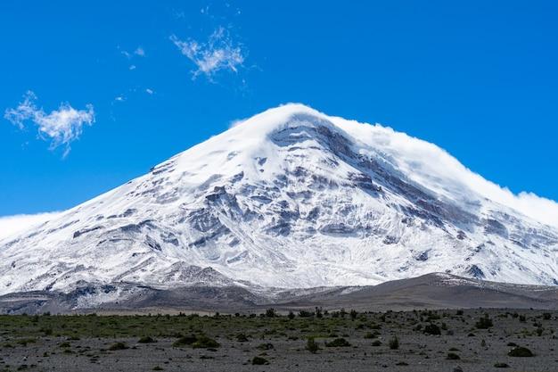 Дикая природа в заповеднике чимборасо в эквадоре