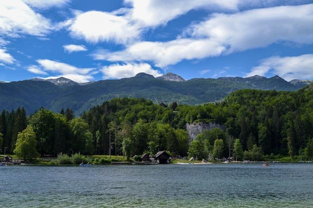Wildlife. mountain lake on a sunny day