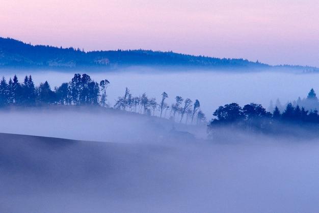 谷の霧、willamette valley、ポートランド、オレゴン州