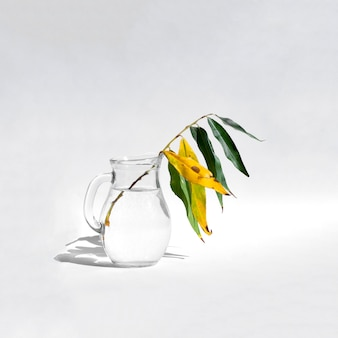 Willow branch in a glass jar
