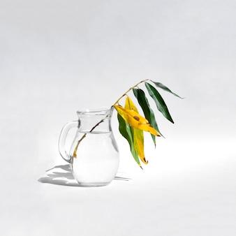 Ветка ивы в стеклянной банке