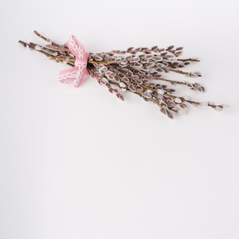 Willow branches with catkins on white table