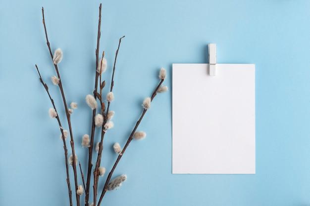 Ветки ивы с белой картой на синем фоне, весна, вид сверху, пасха, вербное воскресенье