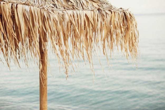 Wind blows dry grass on beach umbrella