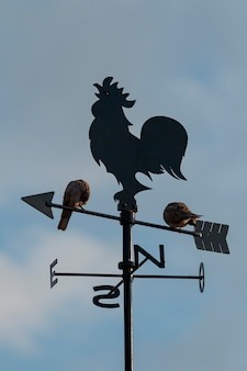 Wind cock with two doves