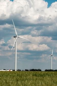 녹색 에너지의 밀밭 생산에있는 바람 농장