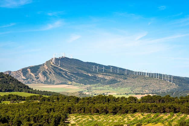 山頂の風力発電所柔らかな白い雲と青い空スペインの風景シエラデラオリバアルバセテスペイン
