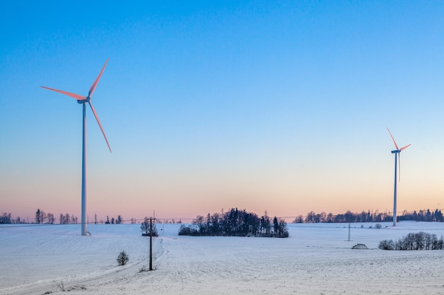 Wind power plants in the field at sunrise