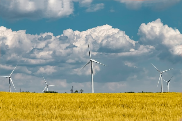 Wind power station in a wheat field generates electrical energy