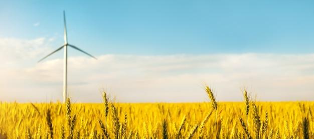 Wind turbine among golden ears of grain crops.