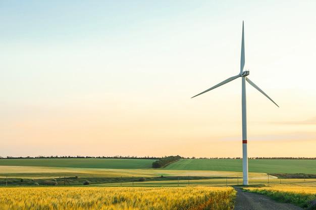 Ветровая турбина и красивые поля на закате, место для текста