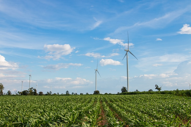 Wind turbine farm power generator in beautiful nature landscape for production of renewable green energy.