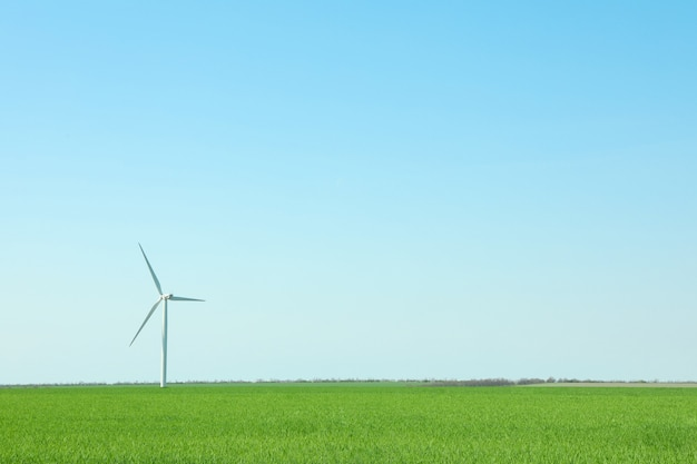 Wind turbine in a green grass field, space for text. beautiful spring greenery
