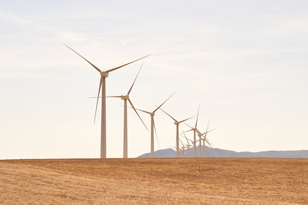 Wind turbine line producing electricity in the field. concept of renewable energies. cadiz, spain.