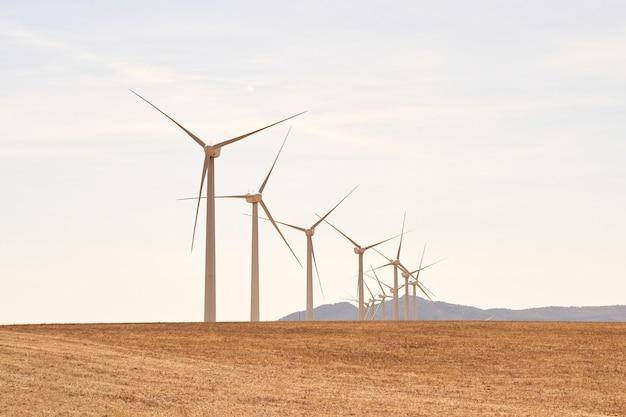 현장에서 전기를 생산하는 풍력 터빈 라인. 재생 가능 에너지의 개념. 카디스, 스페인.