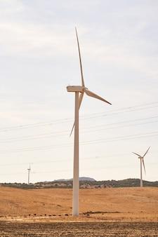 필드에서 전기를 생산하는 풍력 터빈. 재생 가능 에너지의 개념. 카디스, 스페인.