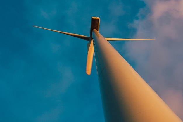 Wind turbine seen from a low point of view, which stand on a flat meadow against a blue sky.