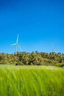 緑の牧草地の上に風力タービンが際立っています
