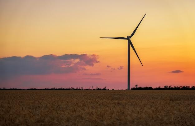風力タービンと夏の日の農業分野。エネルギー生産、クリーンで再生可能なエネルギー。