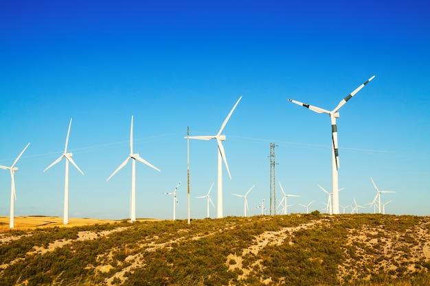 Wind turbines at farmland in summer