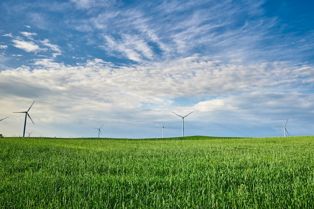 Wind turbines on a field with green grass
