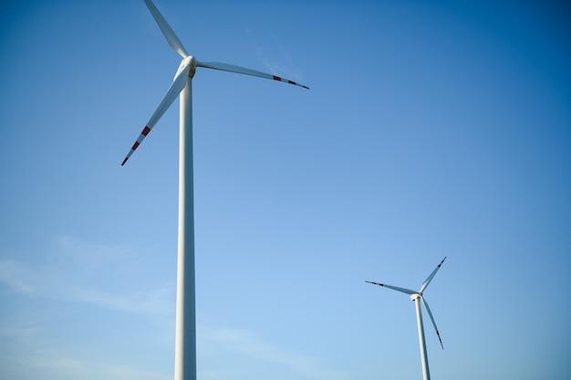 Ветряные турбины в зеленом поле и голубом небе.