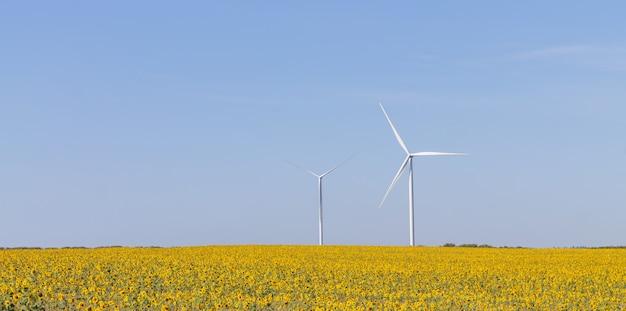 Пейзаж ветряных турбин