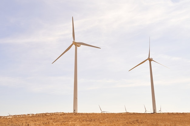 Wind turbines producing electricity in the field. concept of renewable energies. cadiz, spain.