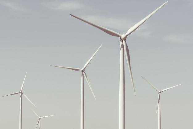 Wind turbines on a summer day