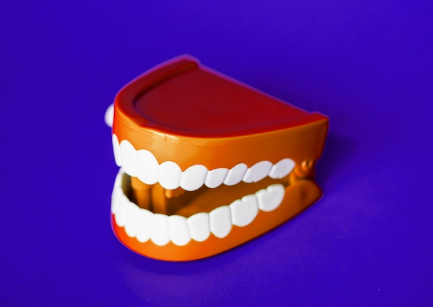Wind up chattering teeth toy