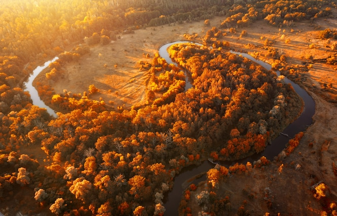 Winding river in the autumn forest early in the morning at dawn.