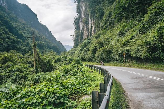 緑の森の山々の間の曲がりくねった道