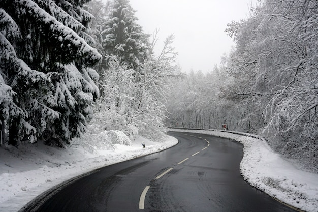 Winding road crosses a completely snowy landscape