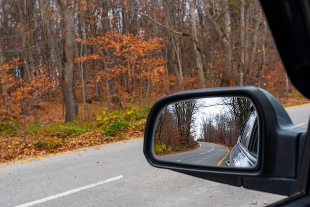 秋の山林の曲がりくねった道