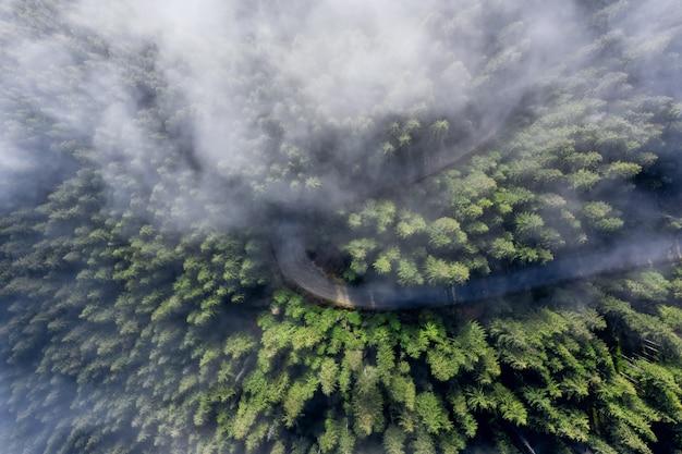 푸른 나무와 아침 안개와 함께 산에서 구불 구불 한도. 조감도.
