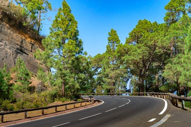 山林の木製フェンスと曲がりくねった道。青い空を背景に明るい緑の森。