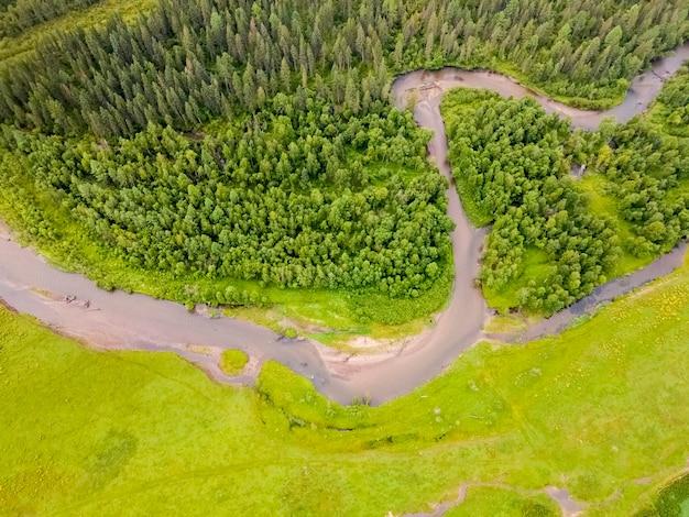 ウルスル川アルタイ山脈の曲がりくねったセクション緑の野原と森空撮