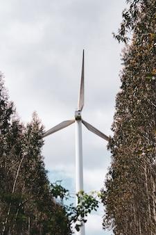지속 가능하고 재생 가능한 에너지를 생산하는 풍차 풍력 나무 자연