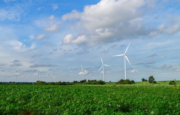 Windmills for electric power production at huai bong