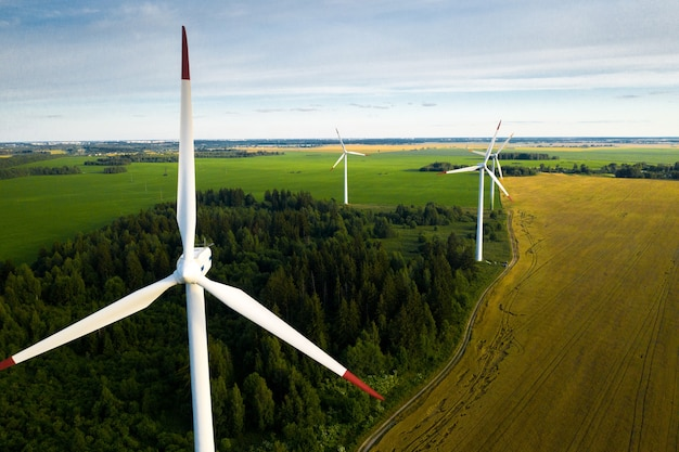 Windmills on the of forests and fields