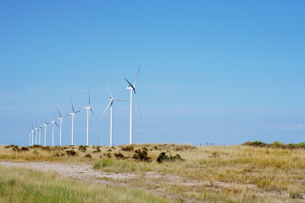 필드, 푸른 하늘 및 복사 공간의 풍차 발전기