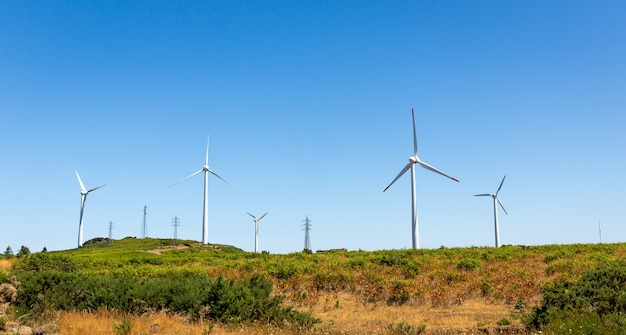 Ветряные мельницы в долине