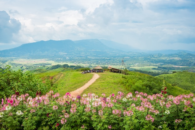 Windmills new energy with spring flower on the moutain at khao kho, phetchabun, thailand