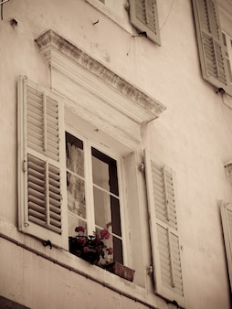 Window box of flowers in corfu