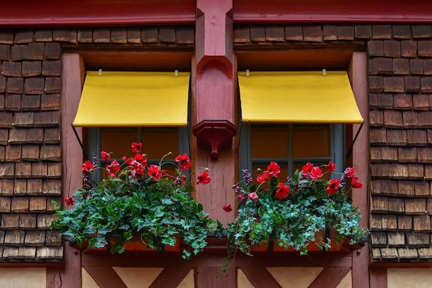 ポピーとツタの花が窓辺からぶら下がっているウィンドウボックス