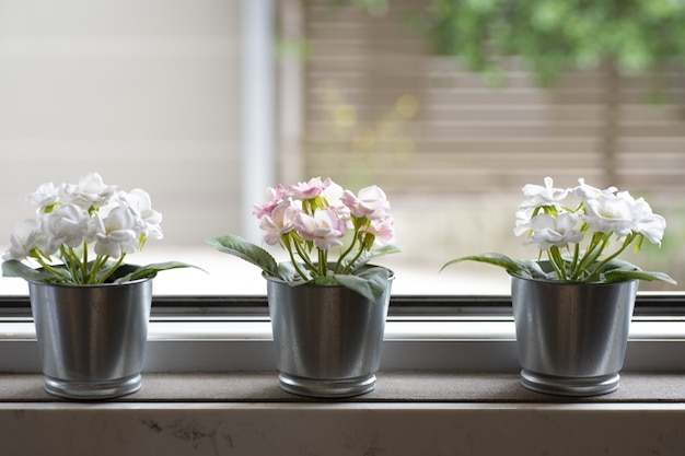 Window sill with three flowerpots on a blurred background