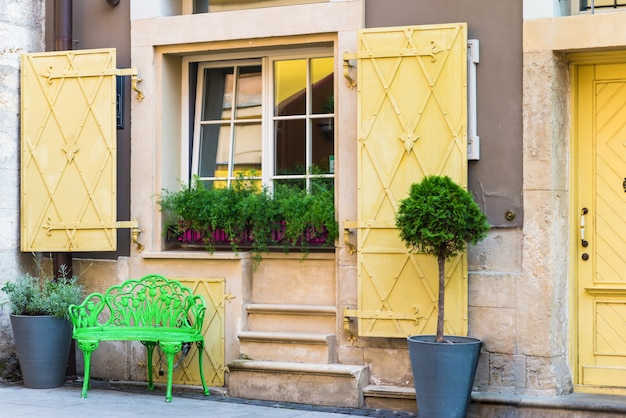 Window with flowerpots and paw
