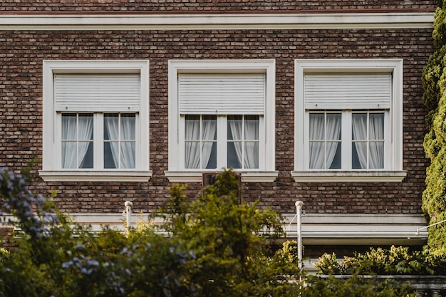 Windows of apartment building in the city