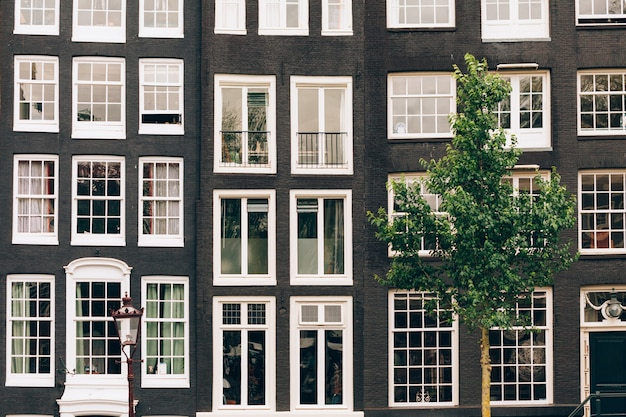 Windows of the buildings in amsterdam